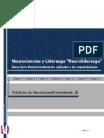Apunte E - Practicos de Neurosicoentrenamiento III