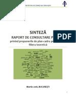 SINTEZA Raportului de Consultare a Planurilor-cadru de liceu