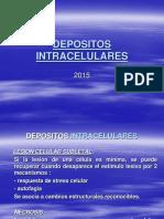 4.-Depositos Intracelulares