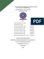 Laporan PKB-18