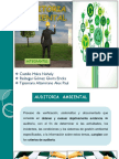 Auditoria Ambiental g 10