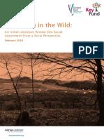 Borrowing in the Wild