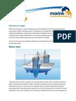 FishingMethods.pdf