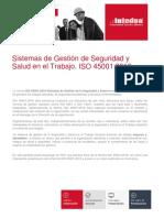 Presentacion Sistemas de Gestion de Seguridad y Salud en El Trabajo Iso 450012018