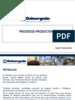 Procesos Productivos_2013 (1)