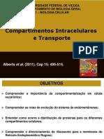ComparrtimentosIntracelulareseTransporteI