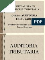 Auditoria Tributaria_dic 2014 Feb 2015 Eobb