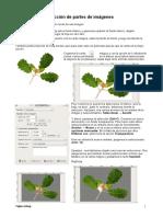 practicas de gimp.pdf