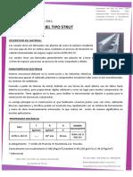 Ficha Tecnica Rieles Strut 2016 -1