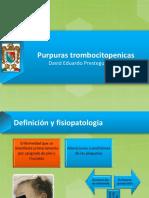 purpurastrombocitopenicas-130521045137-phpapp01