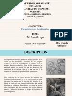Parasitologia Macias J