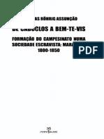 332435143-ASSUNCAO-Matthias-Rohrig-De-caboclos-a-bem-te-vis-Formacao-do-campesinato-uma-sociedade-escravista-26-47-pdf.pdf