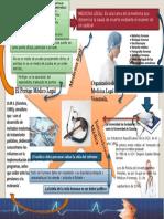 1era Evaluacion Mapa Mental Carmen Alcalá
