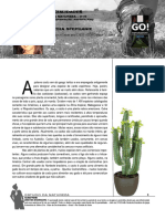 Cactos.pdf