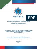Analisis de la aplicacion del interes superior del niño.pdf