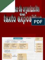 Texto Expositivo - Modelos de Organización