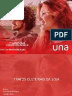 TRABALHO GRANDES CULTURASa.pptx2.pptx