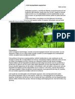 Artikel Low Tech Mini Ecosysteem