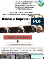 aulaicaprinoseovinosap-140626171917-phpapp01