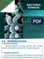 Bacteria Slides