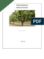 metode berkebun mangga.pdf