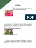 Interaksi Komponen biotik