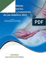 Guias Pie Diabetico