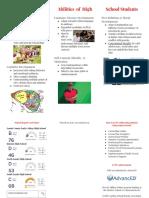 developmental project- high- executive summary brochure
