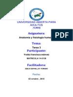 Universidad Abierta Para Adultos.docxanatomia3