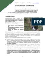 articulo_sanacion.pdf