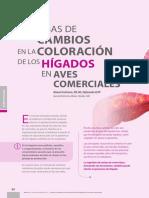Cambio Coloracion Higado Specialnutrients