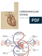 K1 - ANATOMY  OF CARDIOVASCULAR SYSTEM.pptx