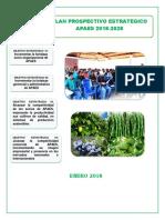 Plan Prospectivo Estrategico Apaes 2018-2028 Final