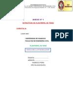 Propuesta de Estructura Metodologica