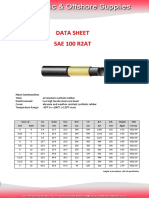 R2T Hose data sheet.pdf