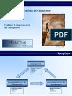 MV Consulting.pdf