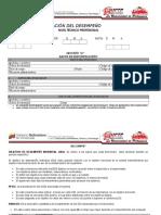 EVALUACION DEL DESEMPEO-TECNICO PROFESIONAL.doc
