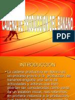 Cadena Banano