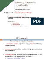 AA.3.Taxonomia. Corto. (3).