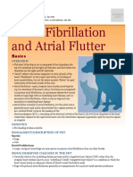 Atrial Fibrillation and Atrial Flutter