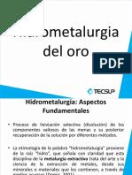 Presentación - Hidrometalurgia Del Oro