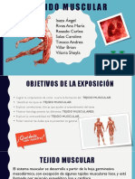 12. Tejido Muscular