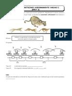3er Año - FISI - Guía Nº 4 - Moimiento Rect. Unif. Variado I