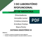 AES 2 06 - Sistema Digestorio 3 e Metabolismo de Lipídios e Proteínas - Professor