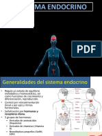 endocrino eje