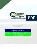 en_que_invertir_en_btura_2010.pdf