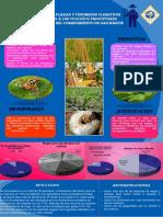 Poster Metodologia Final