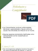 8. helicobacter