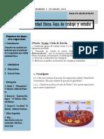 M H y S Eje act fisica clase 3 .pdf