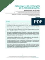14_enf_renales_rn_0.pdf